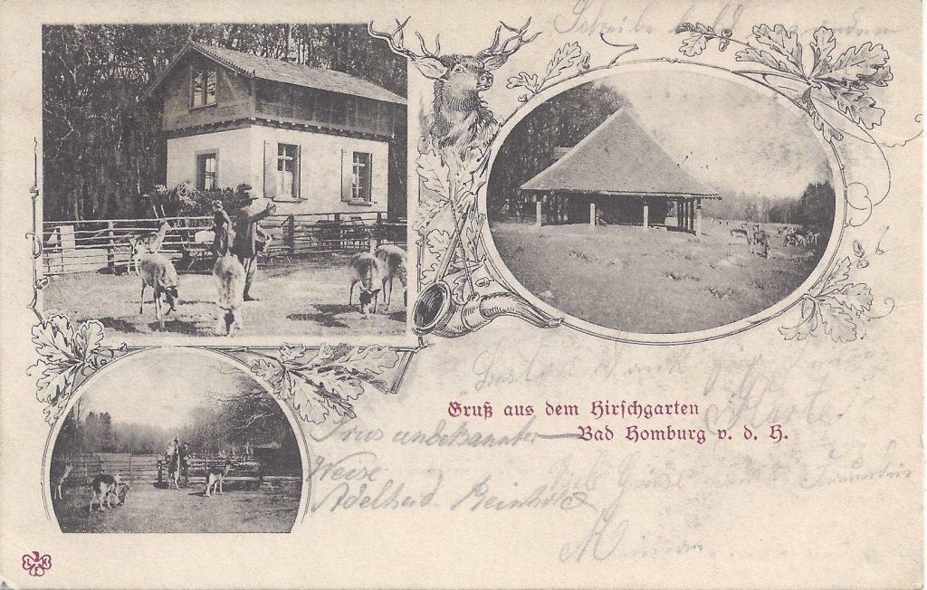 Ansichtskarte Hirschgarten
